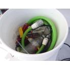船外機洗浄ポンプ